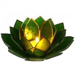 Photophore Lotus Vert