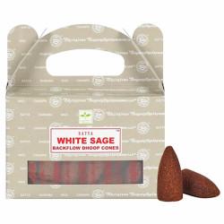 Encens indien White Sage