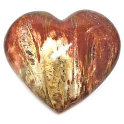 Coeur en Bois Fossile