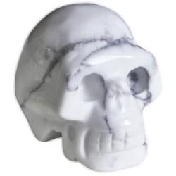 Crâne en Howlite