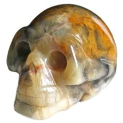 Crâne en Agate Crazy Lace