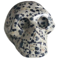 Crâne en Jaspe Dalmatien